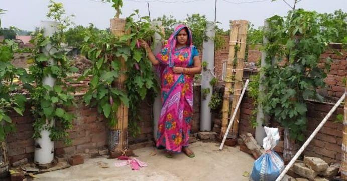 बिहार की सुनीता बाँस और पाइप में उगा रही हैं सब्जियाँ, मशरूम ने बनाया आत्मनिर्भर!